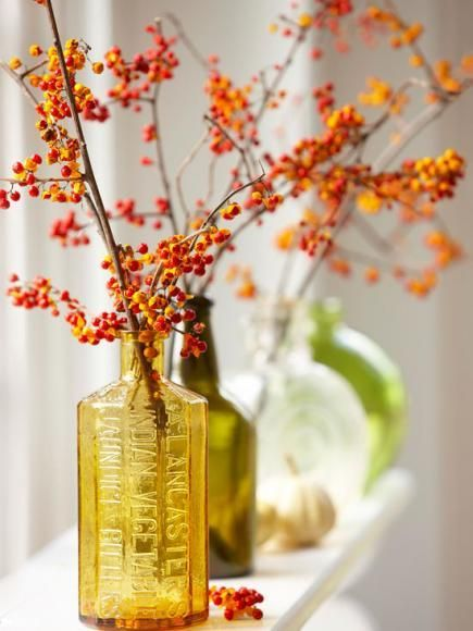 Gold, green and clear bottles show off bittersweet vines in this pretty fall display. More fall decorating ideas: http://www.midwestliving.com/homes/seasonal-decorating/easy-fall-decorating-projects/page/12/0