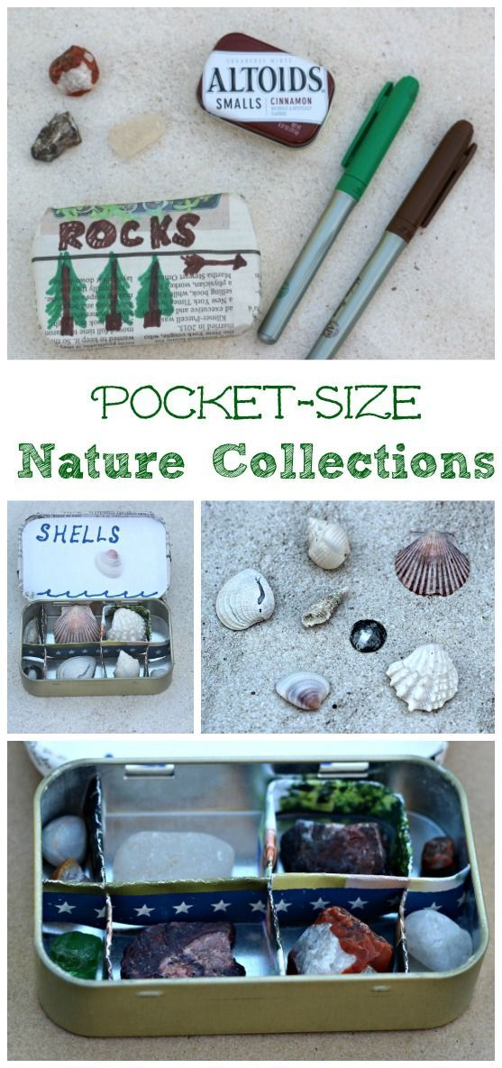 Easy science projects: creating a mini nature collection for kids!  Great for a nature unit or study of geology