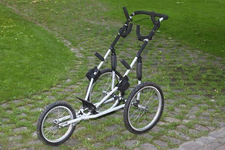 Trolley für's Bigma 300-800, Rucksack, Stativ(e), Tarnzelt usw. - Welchen?