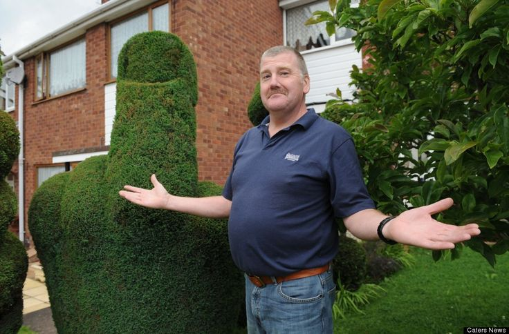 Middle Finger Bush  A bush carved into the shape of a middle-finger has landed a gardener into trouble after somebody failed to share his humour over the shrub. The council received a complaint about the shaped bush eight years after it was carved by Richard Jackson, 53, in his front garden.