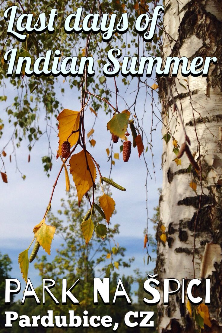 Join us on a walk around Park na Špici in Pardubice, CZ. Catching the last days of Indian Summer!