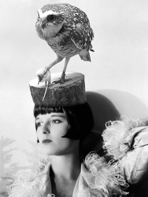 louise brooks and one hell of a hat: Louise Brooks, Louis Brooks, Silent Film, Vintage, Birds, Photo, Owlhat, Owl Hats
