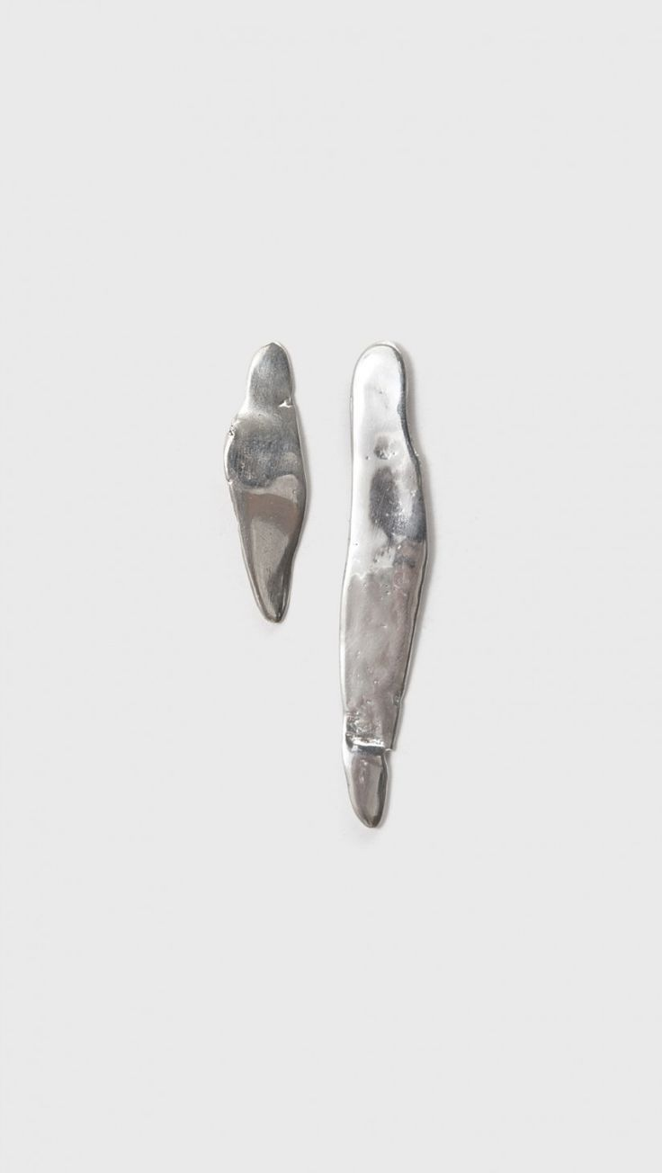 Coyote Negro Laminitas Earrings In Silver | The Dreslyn