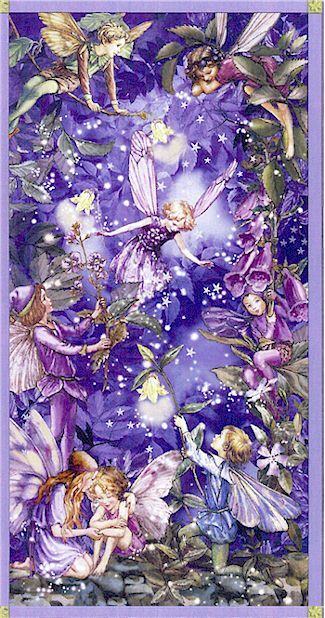 Night Fairies Panel, Michael Miller, NOW IN STOCK, Cicely Mary Barker Flower Fairies, Ladybutton Fabrics
