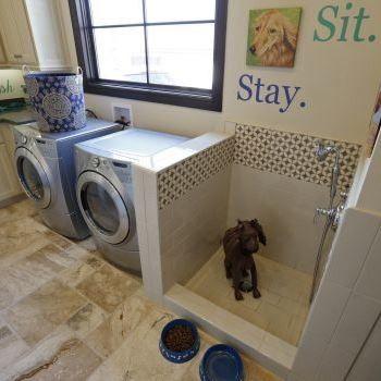 Dog Bathing Station Laundry Room Mediterranean with Austin Best Design Best