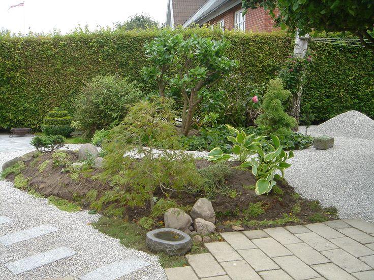 Nyanlagt Japansk have i sep. 2010