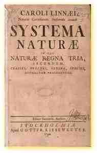 A África estigmatizada. Livro de Carl Von Linné, nele o negro é encarado como espécie inferior ao branco, mas uma contribuição aos estereótipos cristalizados ao longo do tempo.