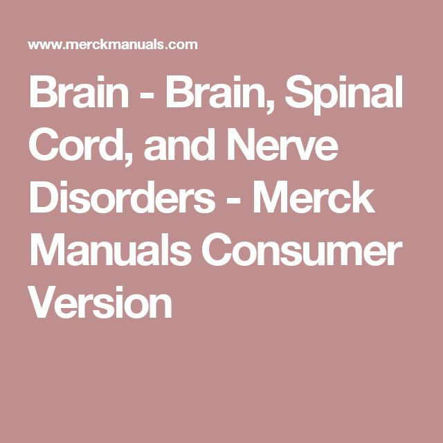Brain - Brain, Spinal Cord, and Nerve Disorders - Merck Manuals Consumer Version