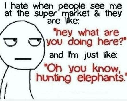 Yeah, 'cause people hunt elephants in super markets!!!!!!