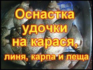 #рыбалка #fishing #оснастка #накарася #накарпа #налиня  Оснастка удочки на карася, линя, карпа и леща