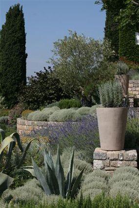Le Manior - mediterranean garden www.stepehenwoodhams.com