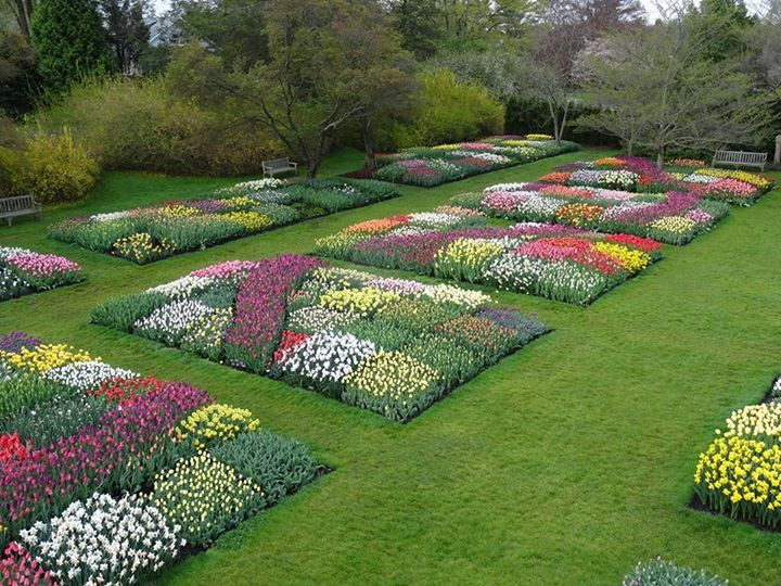 1000 images about longwood garden on pinterest gardens for Landscaping longwood