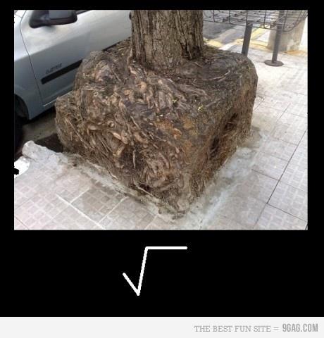 bahahaha yay for math jokes