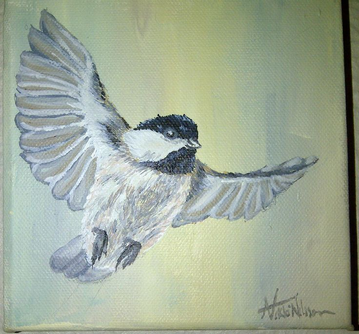 Small bird painting 15cm x 15 cm Canvas Acrylic