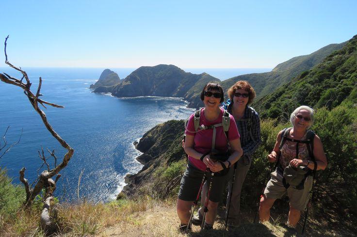 Poor Knights Island on our Kauri Trip #travel #adventuretravel #bucketlist #newzealand  #kauritrip