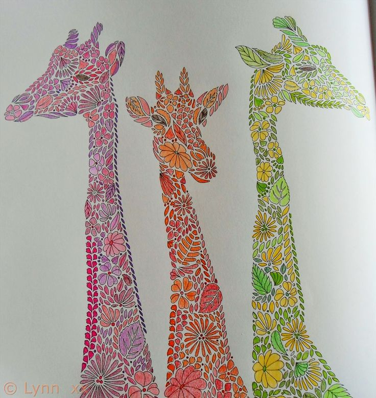 Animal Kingdom Colouring Book Giraffe Giraffe Coloring Pages