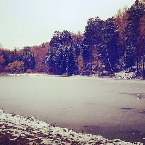 【july_julie17】さんのInstagramをピンしています。 《A frozen lake in Central Siberian Botanical Garden. 秋の森を歩いた時... #russia #siberia #novosibirsk #botanicalgarden #forest #park #lake #frozenlake #autumn #autumncolors #snow #ice #beautiful #beautifulscenery #сибирь #новосибирск #ботаническийсад #природа #лес #осень #озеро #замерзшееозеро #лед #снег #красота #ロシア #シベリア #自然 #森》