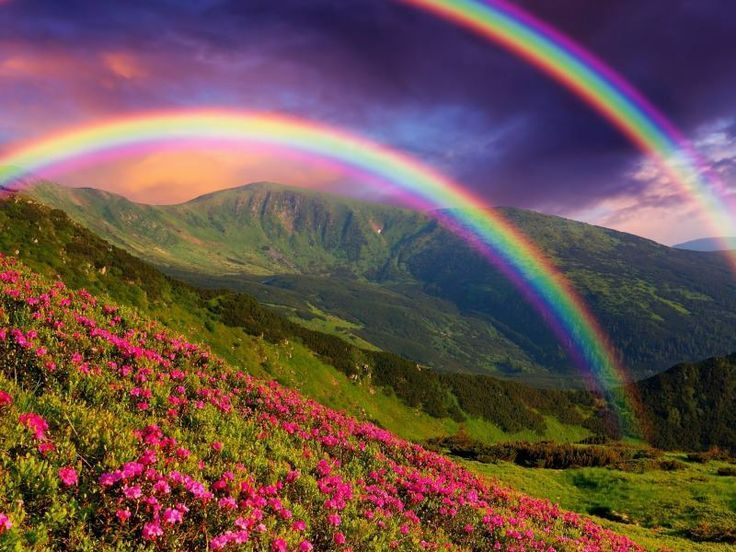 Rainbow Meanings & Symbolism: Portals, Unity, Transformation