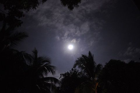 Satyanarayan puja can be performed on any day of the month but doing it on a full moon day of any month is considered highly auspicious.