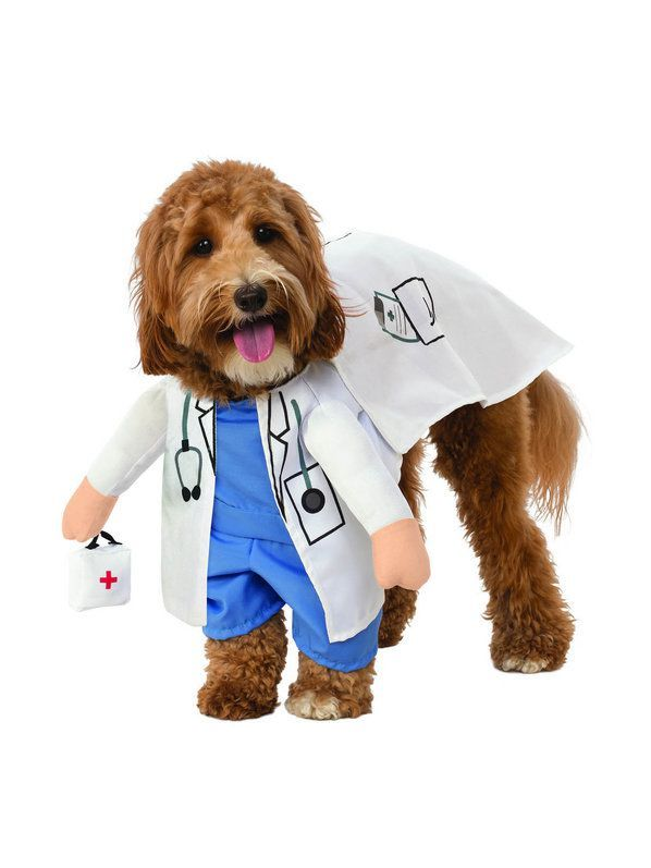 Walking Vet Costume For Pet Pet Costumes Pet Halloween Costumes