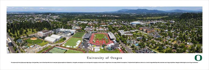 Oregon Campus during Prefontaine Classic Panoramic Poster $29.95