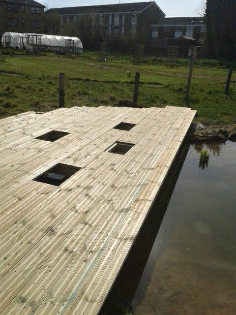 Pond deck with acces panels for viewing wildlife
