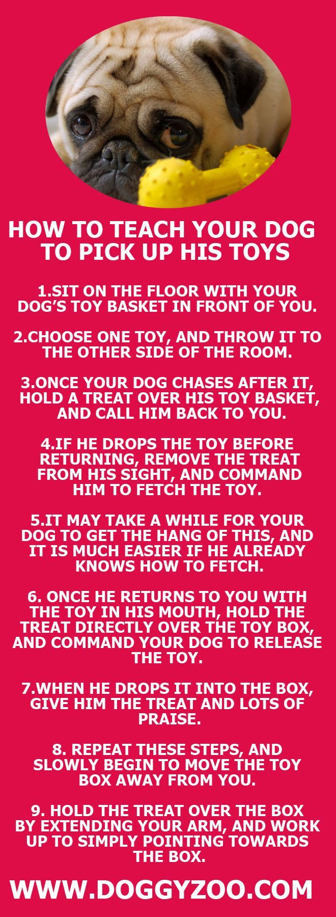 Hmmm, this looks interesting! How to teach your dog to pick up his toys... http://www.poochportal.com/category/dog-training/