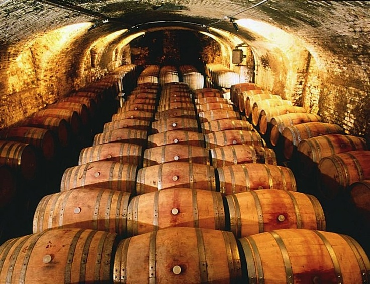 """A historical cellar of """"the King of the red wine: Barolo"""""""