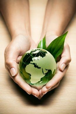 Bunnik Plants loopt voorop als het gaat om maatschappelijk verantwoord ondernemen.