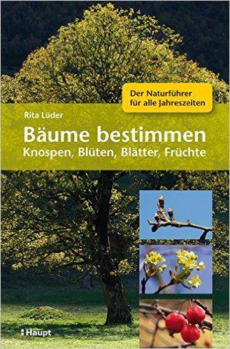 Bäume bestimmen - Knospen, Blüten, Blätter, Früchte: Der Naturführer für alle Jahreszeiten: Amazon.de: Rita Lüder: Bücher