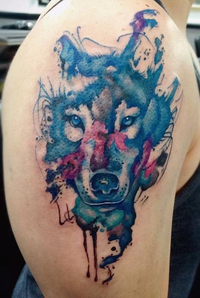 watercolor wolf - Google Search