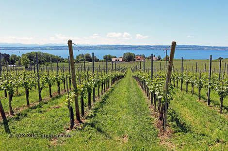 Wine travel, the best bits of Lake Constance - Yahoo Lifestyle UK