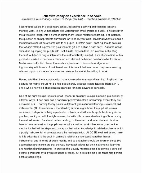 Personal Reflective Essay Example Awesome High School Student Refle Writing Examples Introduction