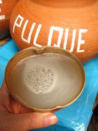 Pulque, bebidas de los dioses.