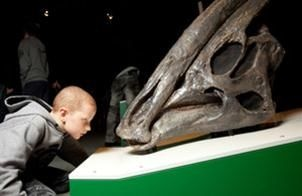 Explore-a-saurus - at QLD museum South Brisbane 23 Nov - 14 Apr $40 per family or $60 including entry to science centre