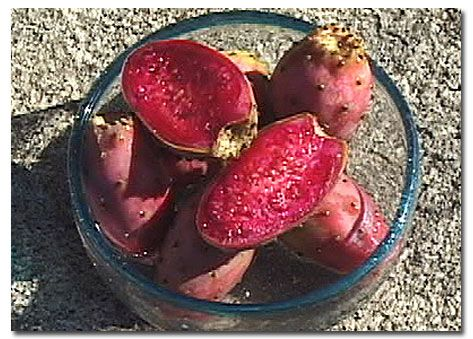After you have removed the glochids you can eat the fruit fresh, or prepare it in several ways. Prickly pear juice can be used to make jelly, conserve, marmalade or as a salad dressing. It can also be mixed with other juices to make smoothies, shakes and other refreshing beverages