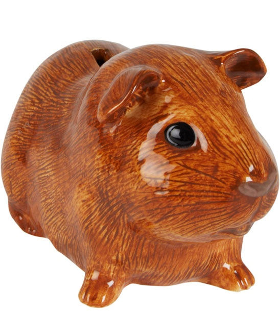 Ginger Guinea Pig Money Box