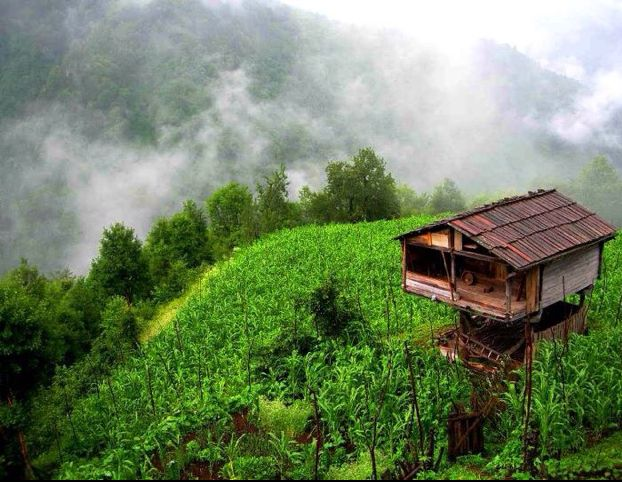 a piece of heaven...artvin, in blacksea region