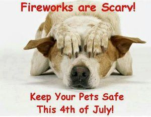 Happy Independence Day.  Please be safe and enjoy.  Click herefor tips from the Oregon Veterinary Medical Associationon  keeping pets safe and secure.