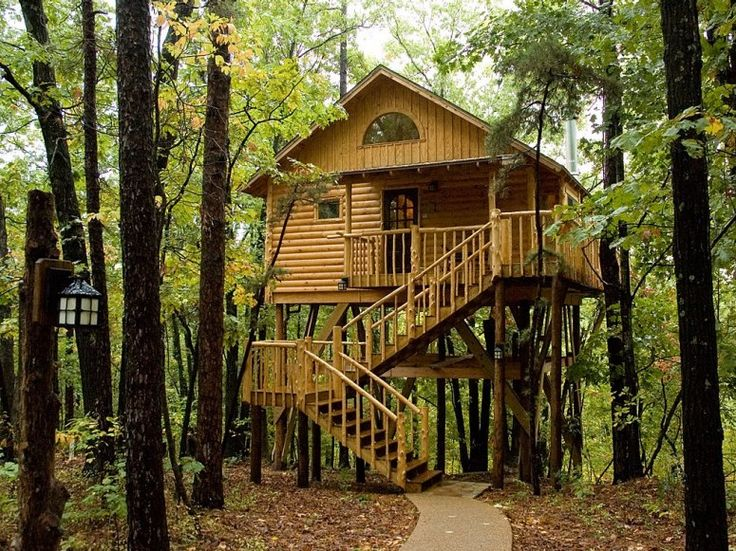 Terry and Patsy Miller operate seven treehouses: three in a wooded hillside at the edge of town and four more buried deep in a 33-acre pine forest of Arkansas.