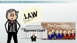 The US Constitution: Preamble, Articles and Amendments - Free US History I Video 7 minutes length...