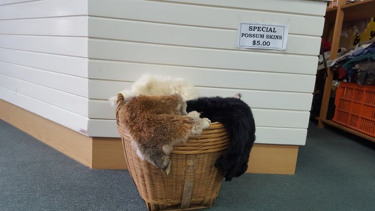 KingslandNZ  THE HOTTEST DEAL IN TOWN Possums skins for only $5!!  The Woolskin Company - 322 New North Road Kingsland   Also many other sheepskin and possum products - slippers, boots, rugs and car seat covers. All made here in New Zealand. Open Mon – Fri 8.00 am – 4.30 pm Closed weekends.