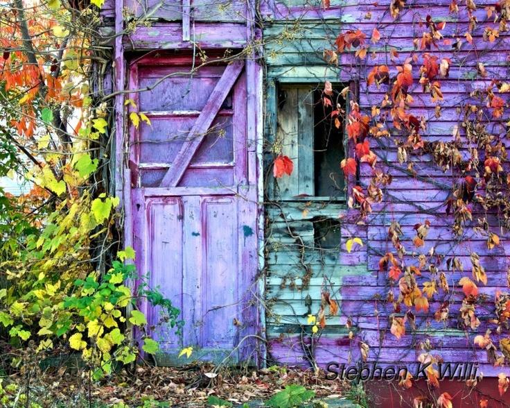 Nature takes over. . . Doors, Beautiful doors,