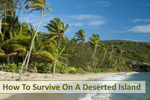 How To Survive On A Deserted Island #survivalist #survival