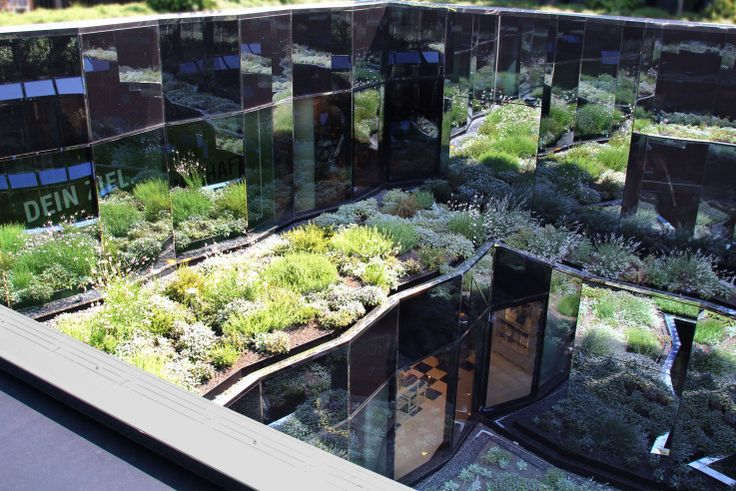 садово-ландшафтном Жозеф-Pschorr дом-зеленая крыша