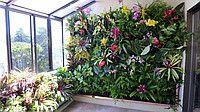 Вертикальный сад  25 карманов 1*1м черный Вертикальное озеленение висячие сады фитостена сад дизайн