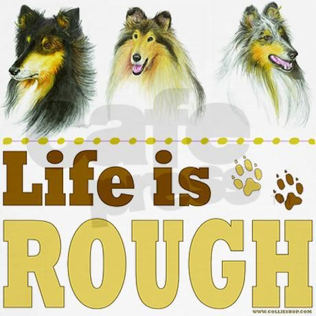 Life is Rough (Collie) Tee on CafePress.com