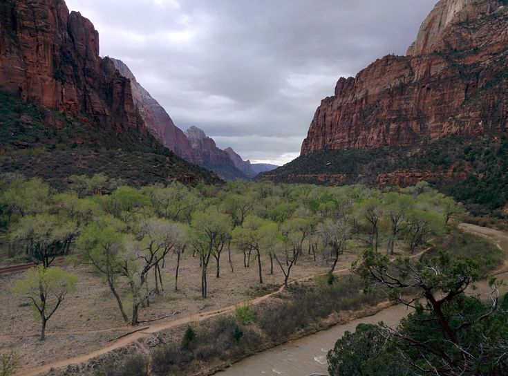 Cloudy day at Zion canyon Zion National Park Utah[OC] [3200X2860] #reddit