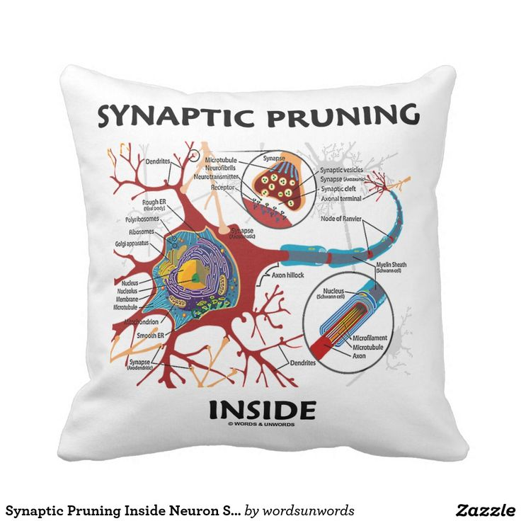 "Synaptic Pruning Inside Neuron Synapse Neurology #synaptic #pruning #inside #neuron #synapse #neurotransmitter #wordsandunwords #psyche #learning #geek #humor #funny Here's a throw pillow featuring a neuron / synapse along with the saying ""Synaptic Pruning Inside"" for anyone who thinks and learns!"
