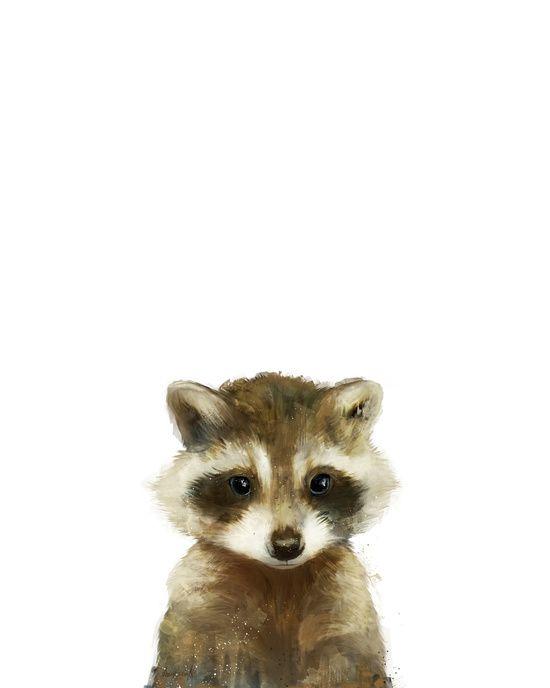 Little Raccoon Canvas Print by Amy Hamilton | Society6